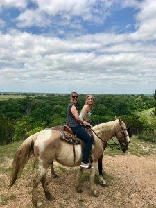 horseback riding top view
