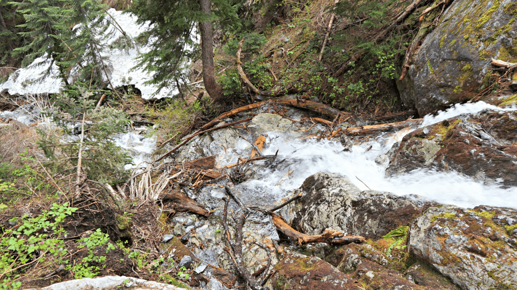 rapids on snow lake trail