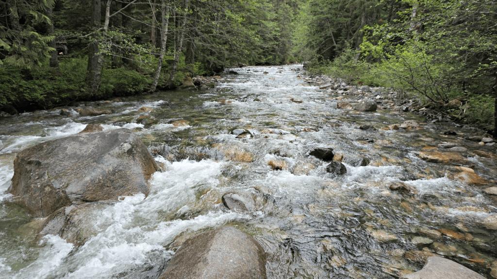 river franklin falls trail