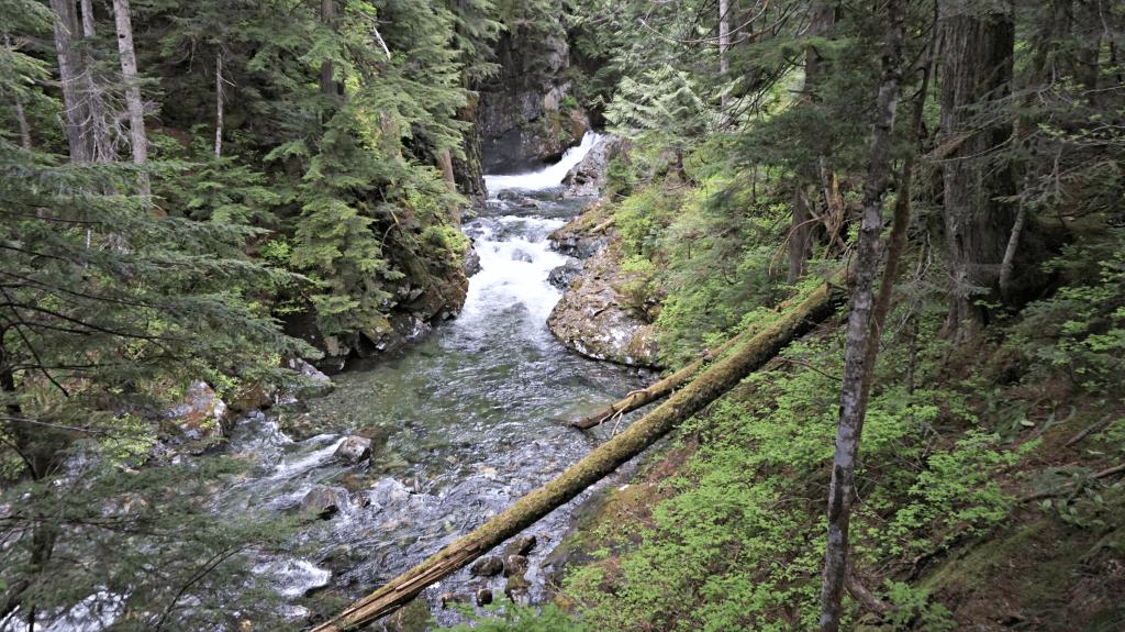 more river franklin falls trail