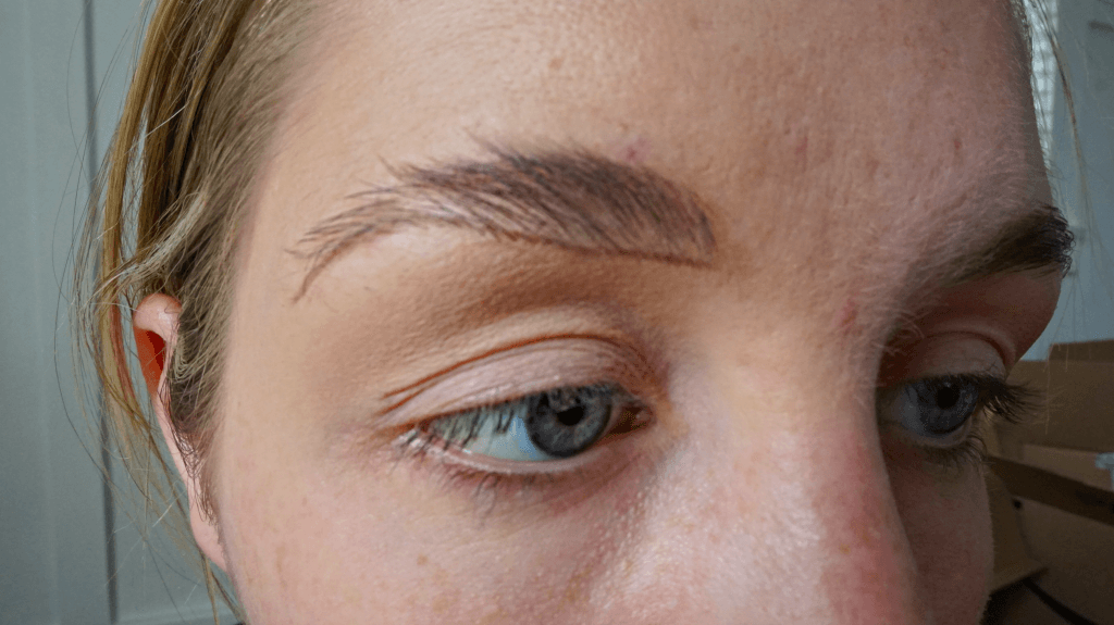 bottom line eyebrow